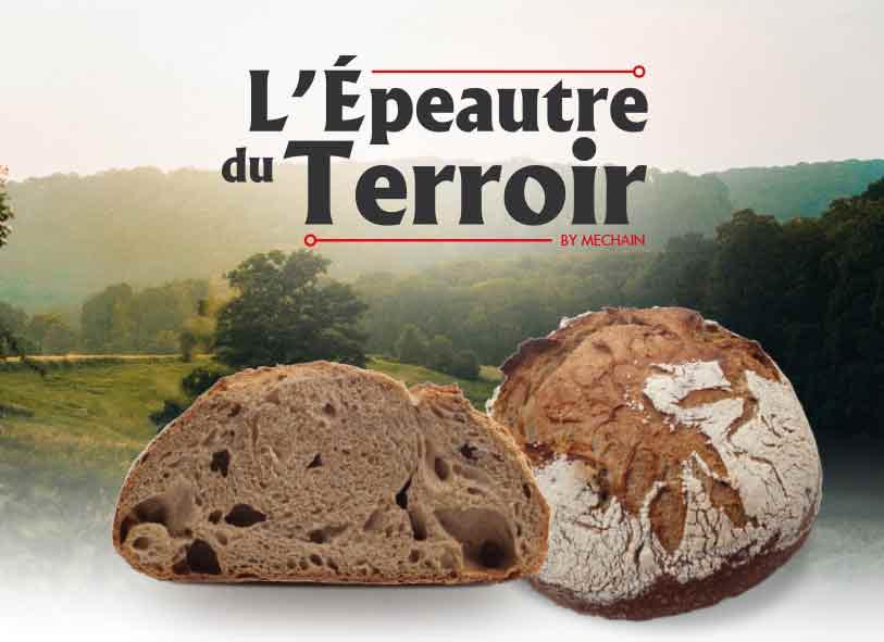 L'EPEAUTRE DU TERROIR, NOUVEAUTE DU MOULIN MECHAIN